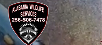 Alabama Wildlife Services